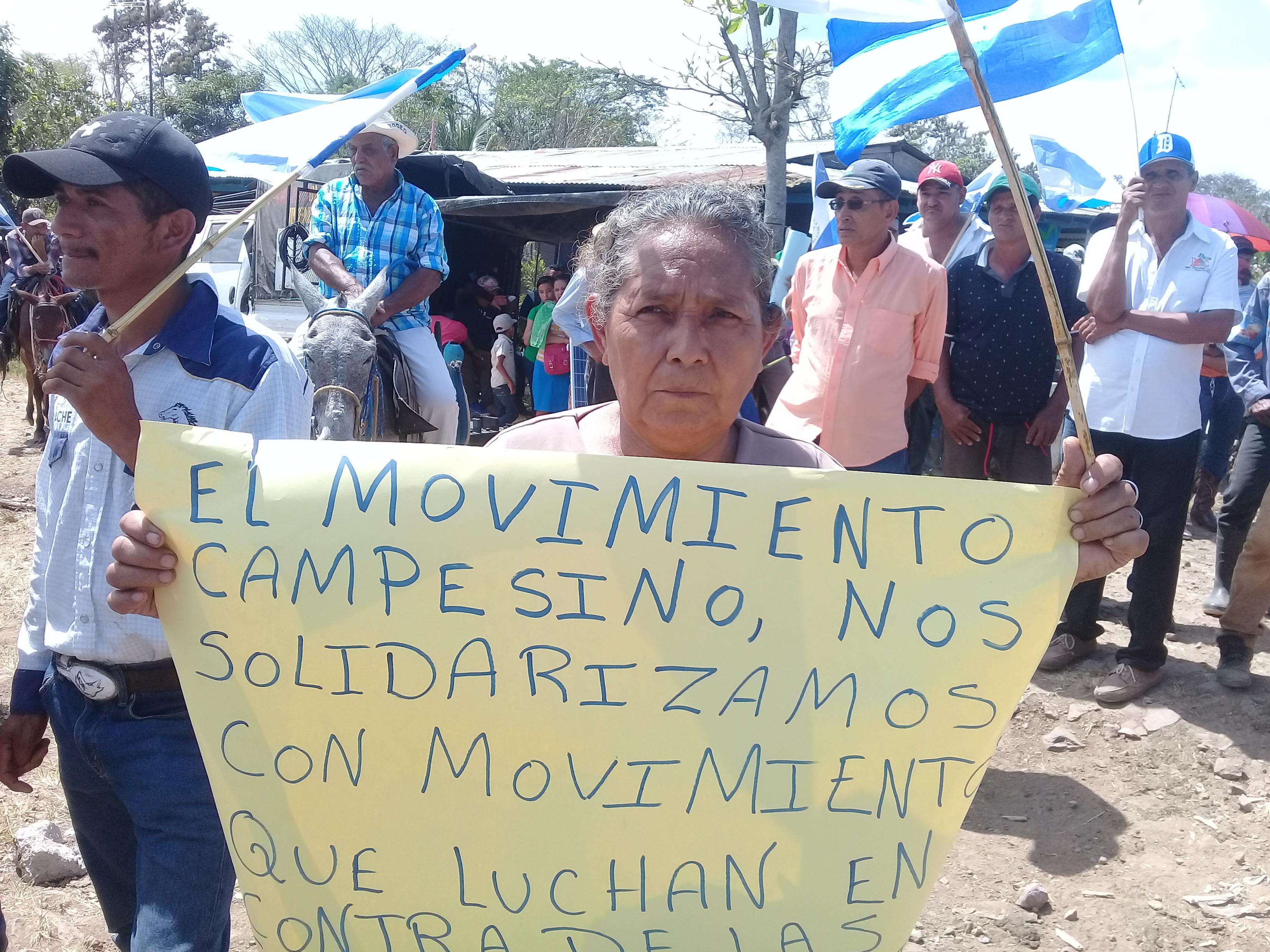 Movimiento Campesino apoya a otros movimientos sociales. Fotografía: Abixael MG/Artículo66
