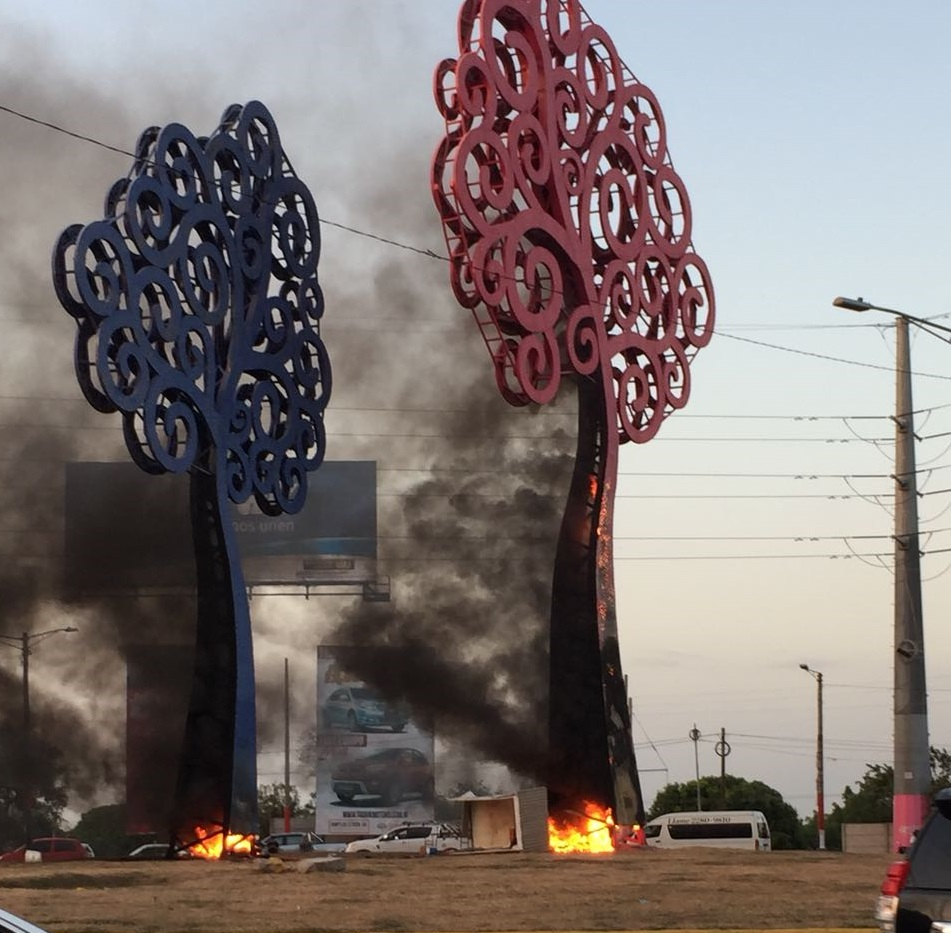 Manifestantes queman estructuras metálicas con forma de árboles. Foto: Cortesía
