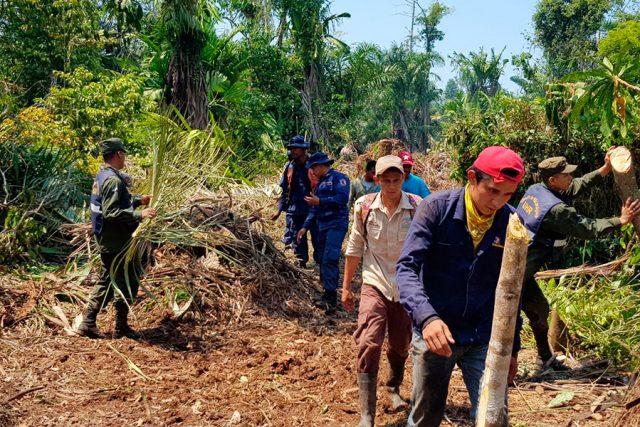 Comunitarios demandan al Gobierno de Nicaragua que dé con el responsable del incendio en Indio Maíz. Foto: Ejército de Nicaragua