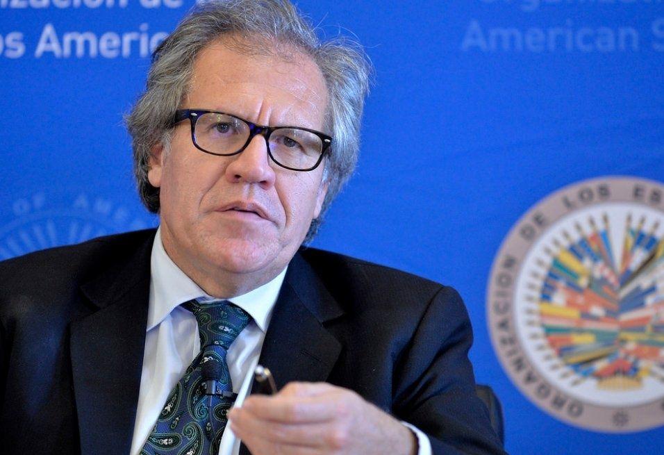 Luis Almagro, secretario general de la Organización de Estados Americanos. Foto: Agencias/Panoramas