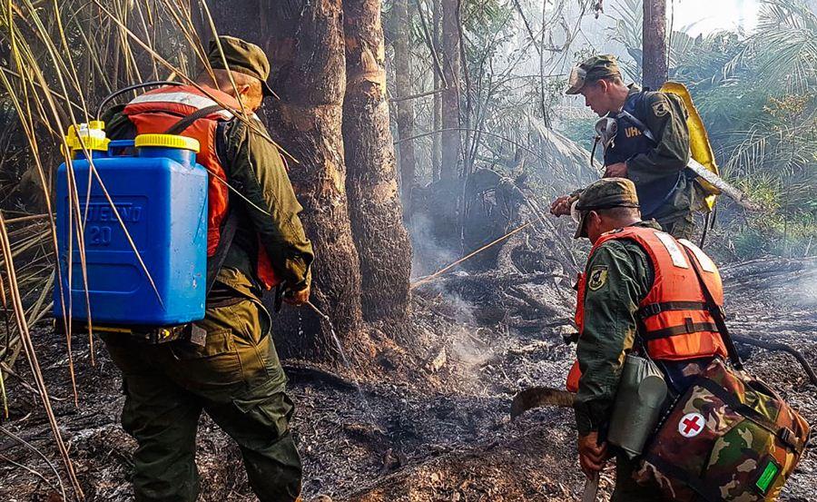 Miembros del Ejército de Nicaragua en trabajos en Indio Maíz. Foto: AFP