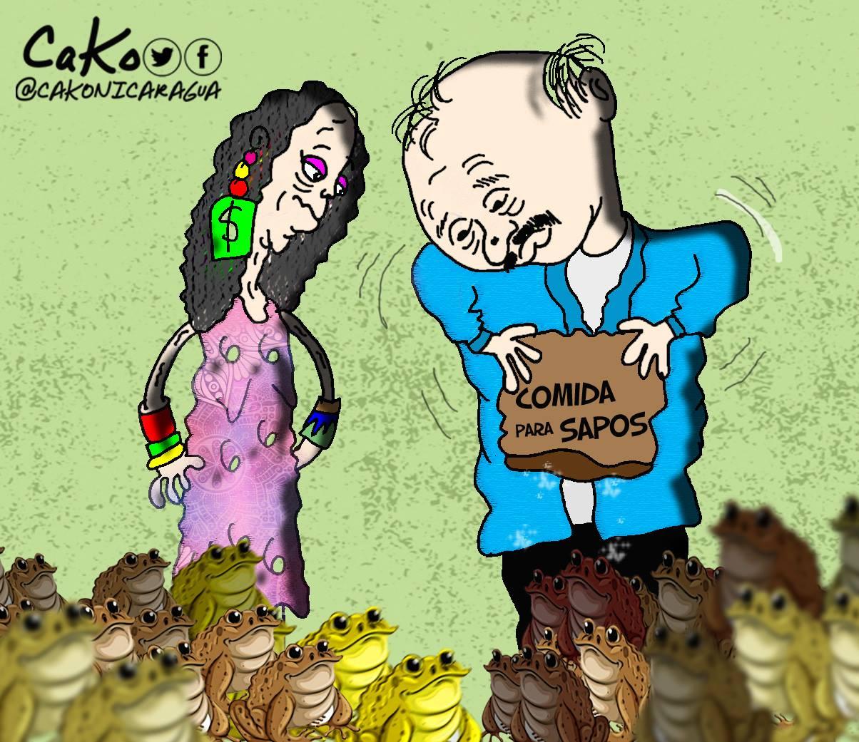 """La Caricatura: Ya """"nuay"""" comida para los sapos. CaKo/Artículo66"""