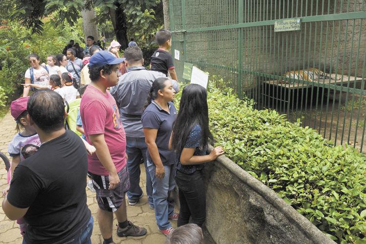 Zoológico nacional. Foto: La Prensa.
