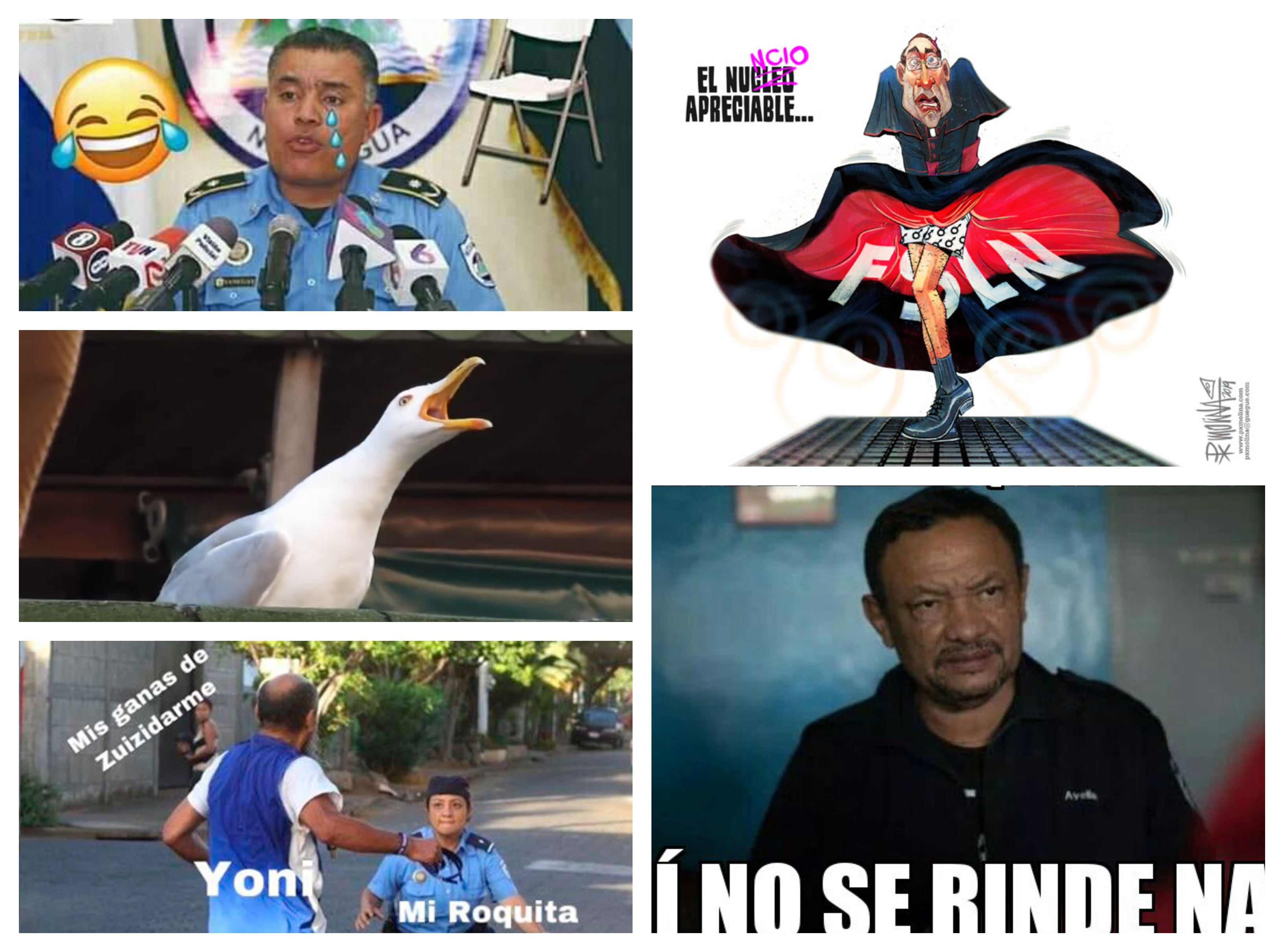 El poder de los «memes» y las caricaturas en la crisis de Nicaragua