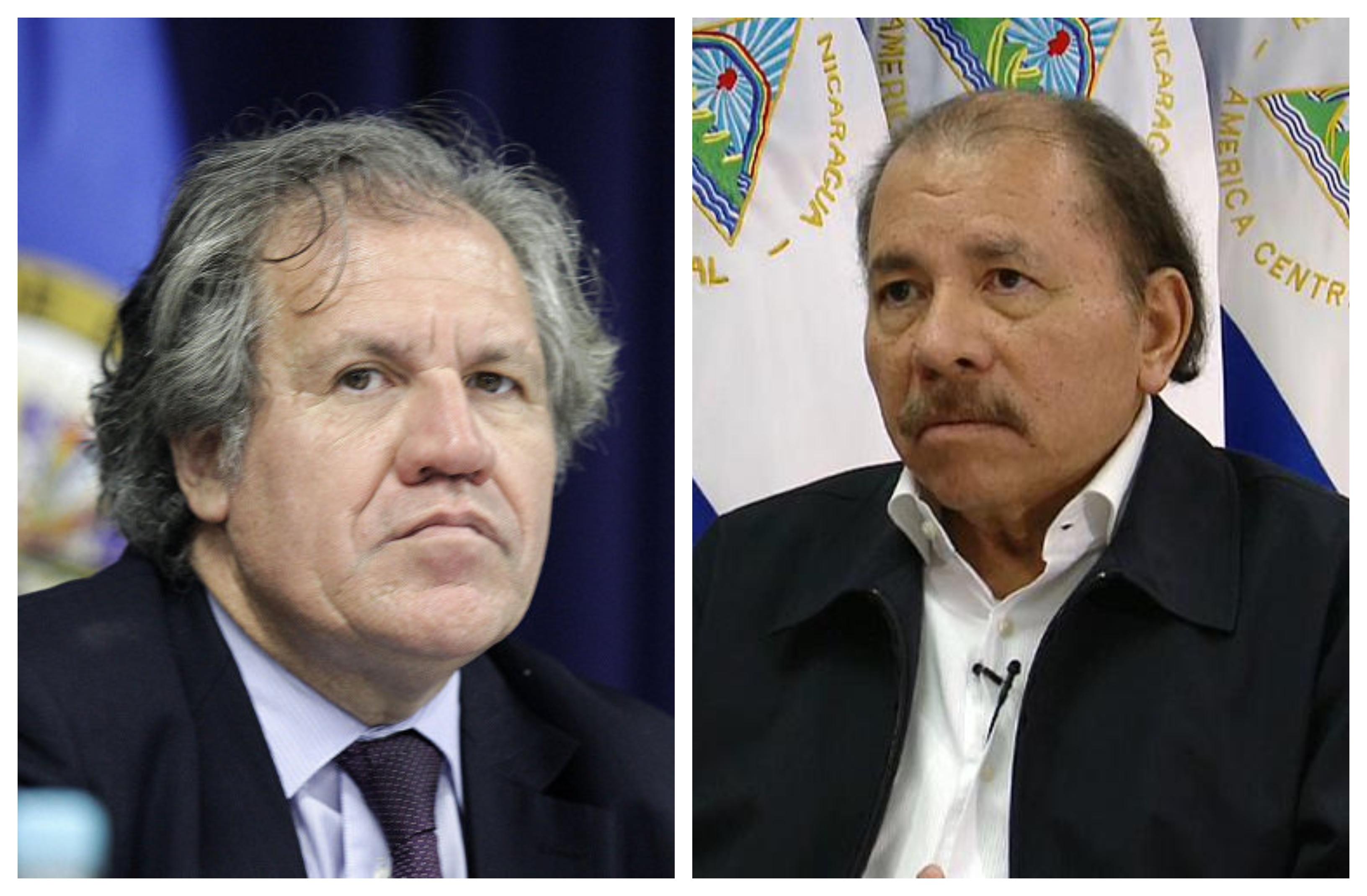 «Para la OEA es prioridad la liberación de los presos políticos»