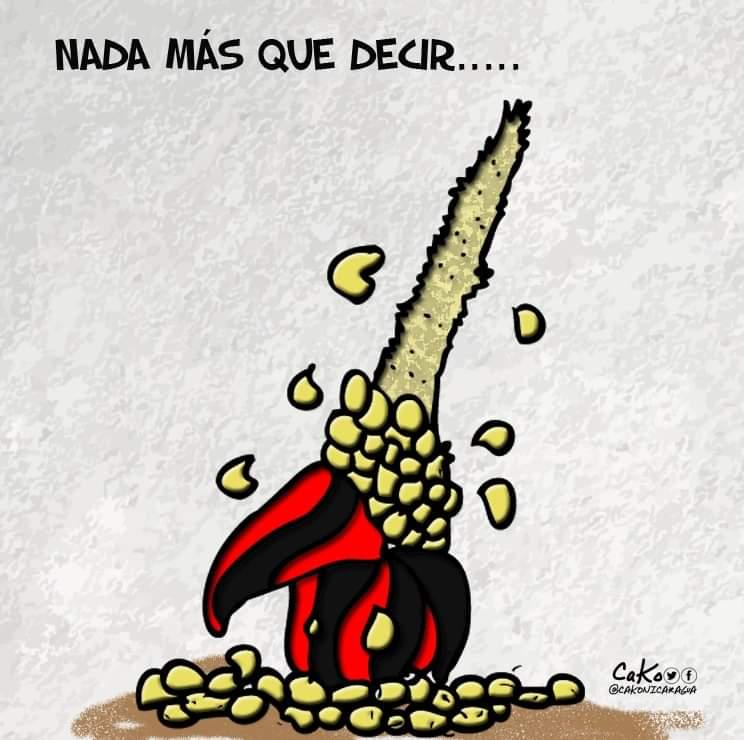 La Caricatura: De grano en grano, se pela la mazorca