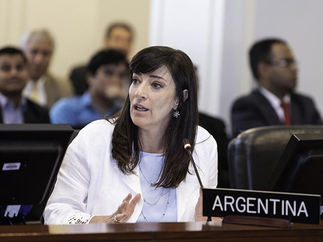 La embajadora que sostuvo su posición crítica ante el régimen de Ortega deja su cargo ante la OEA