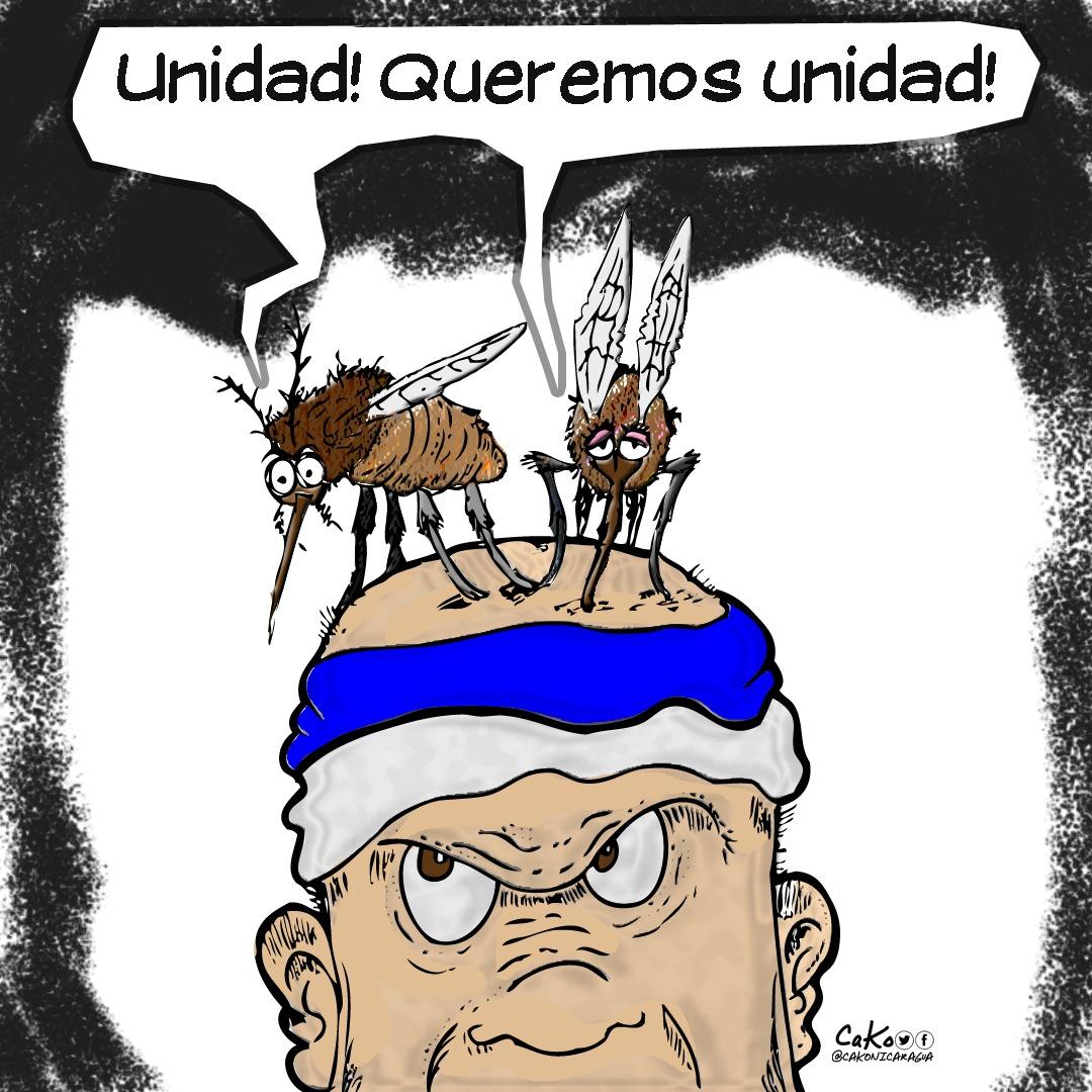 La Caricatura: Nicaragua necesita unidad, pero sin zancudos