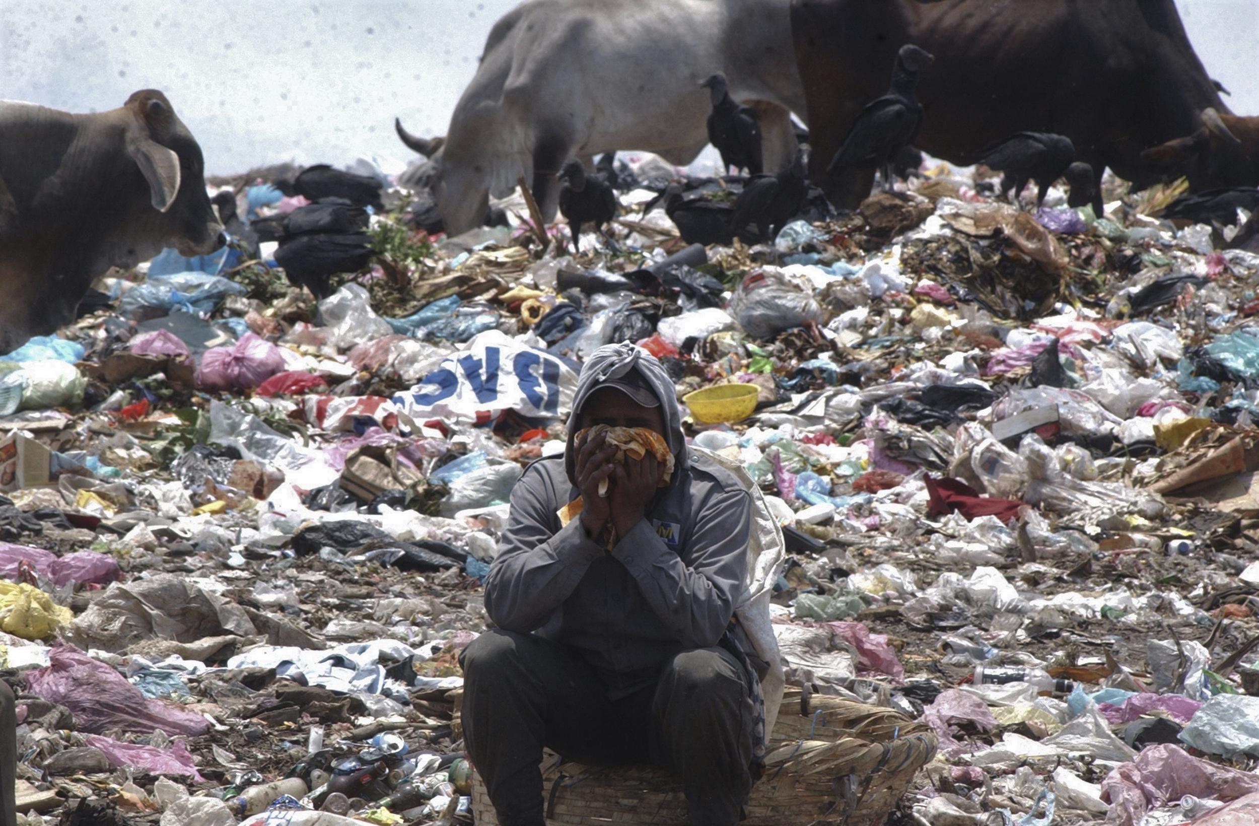 """La situación precaria de miles de Nicaraguenses es cada dia mas deplorable,cientos de personas acuden  todos los dias al vertedero de basura mas grande de la capital(managua),conocido como la """"chureca a urgar en los desechos algo util, mientras sopilotes y vacas se disputan los desperdicios"""