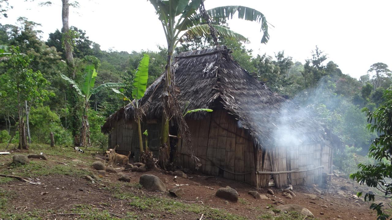 Ataque de colonos deja seis indígenas muertos y diez secuestrados