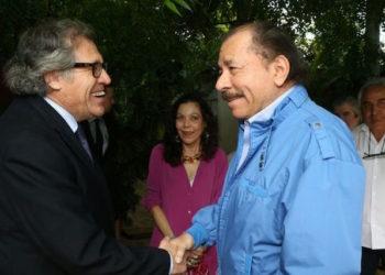 OEA debe poner plazos al régimen de Ortega. Foto: Cortesía