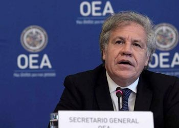 OEA demanda la liberación «inmediata» de presos políticos en Nicaragua. Foto: Internet.