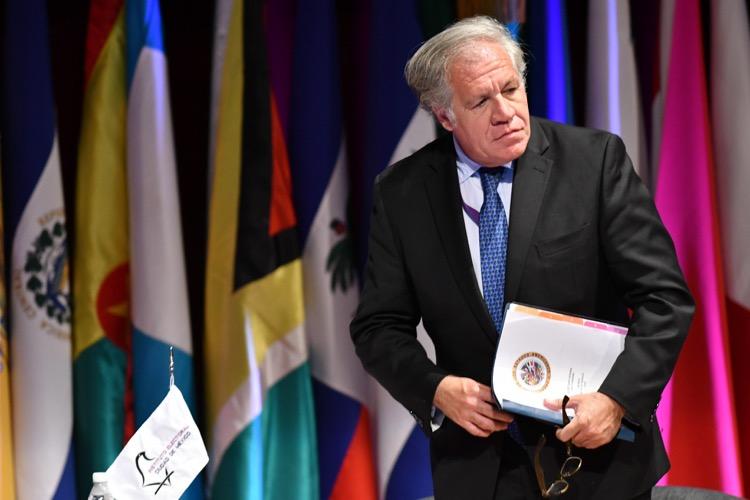 Estados miembros de la OEA respaldan solicitud de Luis Almagro y piden la aplicación de la Carta Democrática al régimen de Ortega
