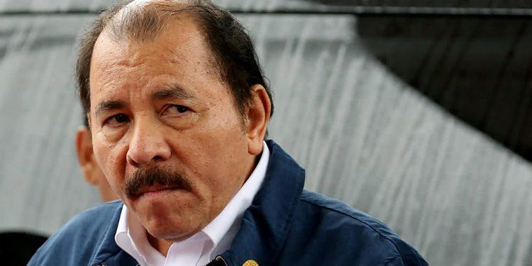 Organizaciones opositoras exigen a la OEA declarar ilegitimo a Daniel Ortega Foto: Tomada de internet
