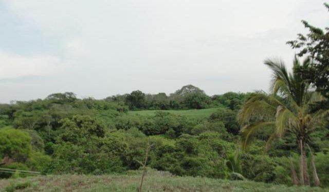 Juez orteguista embarga propiedades de la suegra de Juan Sebastián Chamorro. Foto: Ilustrativa/Intermezzo del Bosque