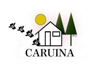 La Caricatura: CARUINA