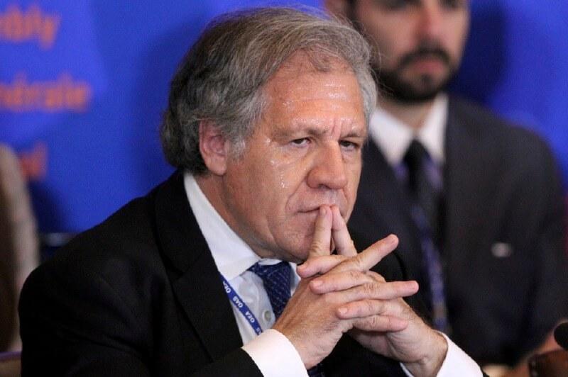 OEA llama al régimen a derogar Ley que saca de competencia a la oposición. Foto: tomada de internet