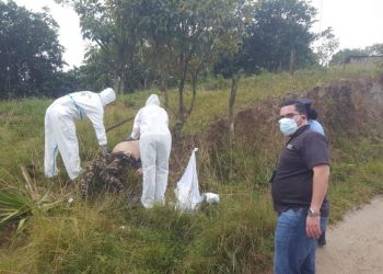 Asesinan en Honduras al rearmado «comandante El Flaco». Foto: tomado de internet