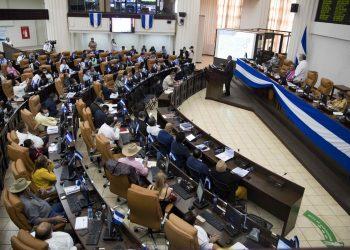 CIDH rechaza ley que inhibe candidatura de opositores en Nicaragua. Foto: Artículo 66/ EFE.