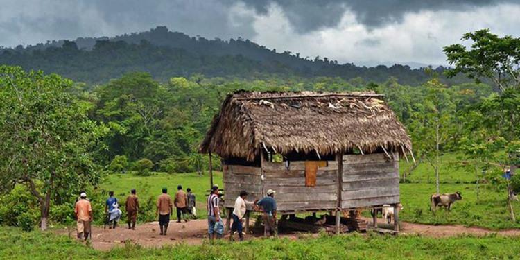 Tres comunitarios heridos deja emboscada de colonos en territorio Mayagna. Foto: Onda Local.