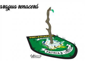 La Caricatura: Nicaragua renacerá