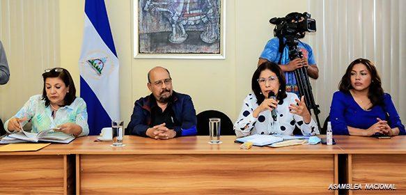 Régimen desatiende repudio y envía a Comisión su reforma electoral. Foto: Asamblea Nacional.