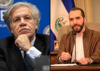 OEA rechaza decisión de Nayib Bukele de destituir a magistrados de la Corte. Arte: elsavaldorgram.