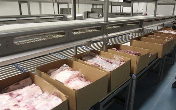 En 2020, Nicaragua exportó 132,99 millones de kilogramos de carne bovina por un valor de 586,1 millones de dólares. EFE/Mario López/Archivo