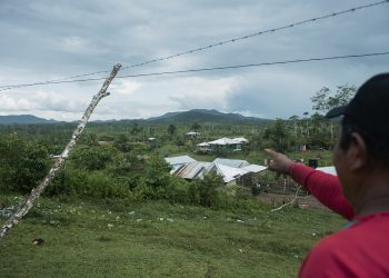 Alba Forestal: negocio de Daniel Ortega que sacó millones de dólares en madera de comunidades indígenas y les dejó pobreza. Foto: Divergentes.
