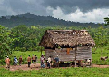 Colonos ejecutan otra masacre contra indígenas Mayagnas en territorio de Bosawas. Foto: Internet.