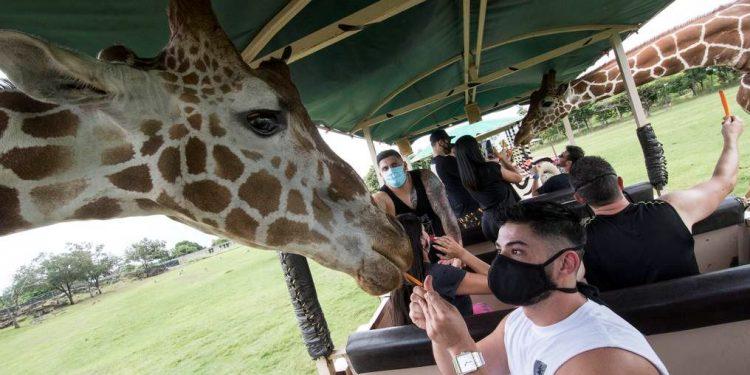 Costa Rica destaca alto flujo de turistas europeos durante agosto