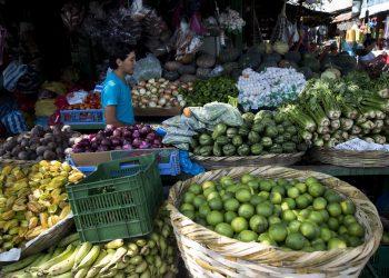 Un joven vende verduras en Managua (Nicaragua). Fotografía de archivo. EFE/ Jorge Torres