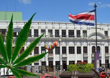 Costa Rica aprueba uso de marihuana medicinal
